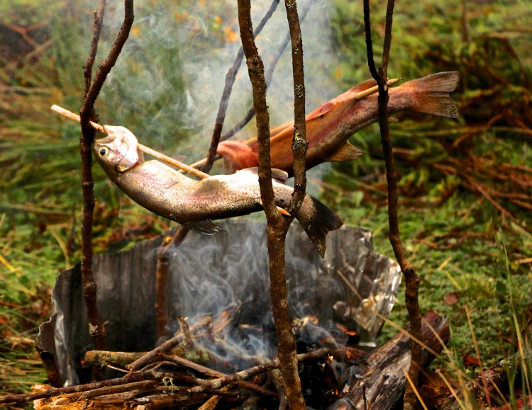 Smoking trout for dinner!