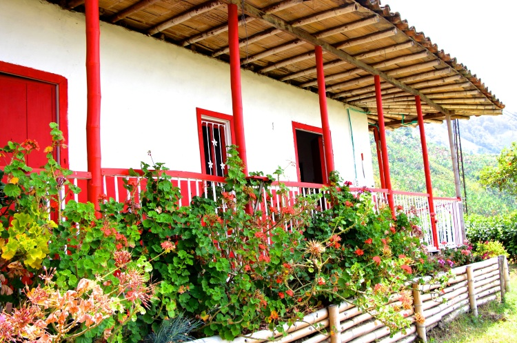 The Zona Cafeteria was recently declared a UNESCO World Heritage Site. This means efforts will be made to protect the landscape and preserve the paisa culture reflected in the historic farms